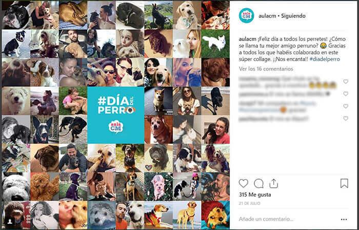 Calendario CM - Día del Perro - Aula CM